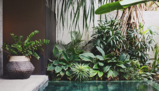 4 easy ways to reduce your hotel's costs and shape a more sustainable hotel character